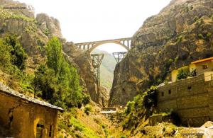 ثبت شرکت در فیروز کوه