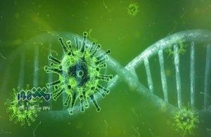 بررسی مسئولیت کیفری انتشار دهندگان ویروس کرونا در ایران